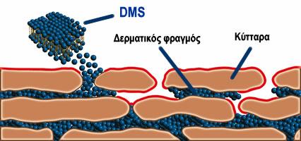 DERMA1